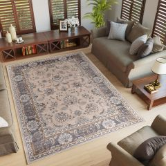 COLORADO Traditional Area Rug Timeless Frame Light Beige Grey