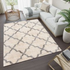 VERSAY Shaggy Area Rug Trellis Cream High Pile Durable Carpet